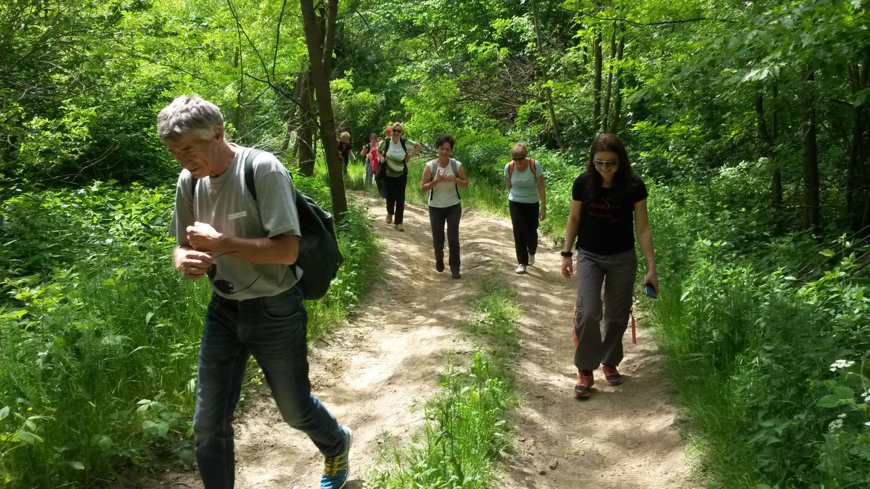 Planinarskim stazama od Ludbrega do Kalnika